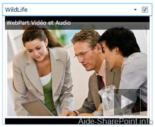 Webpart de vidéo avec image