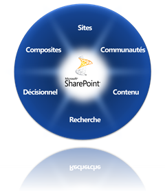 Tarte de fonctionnalités de SharePoint 2010